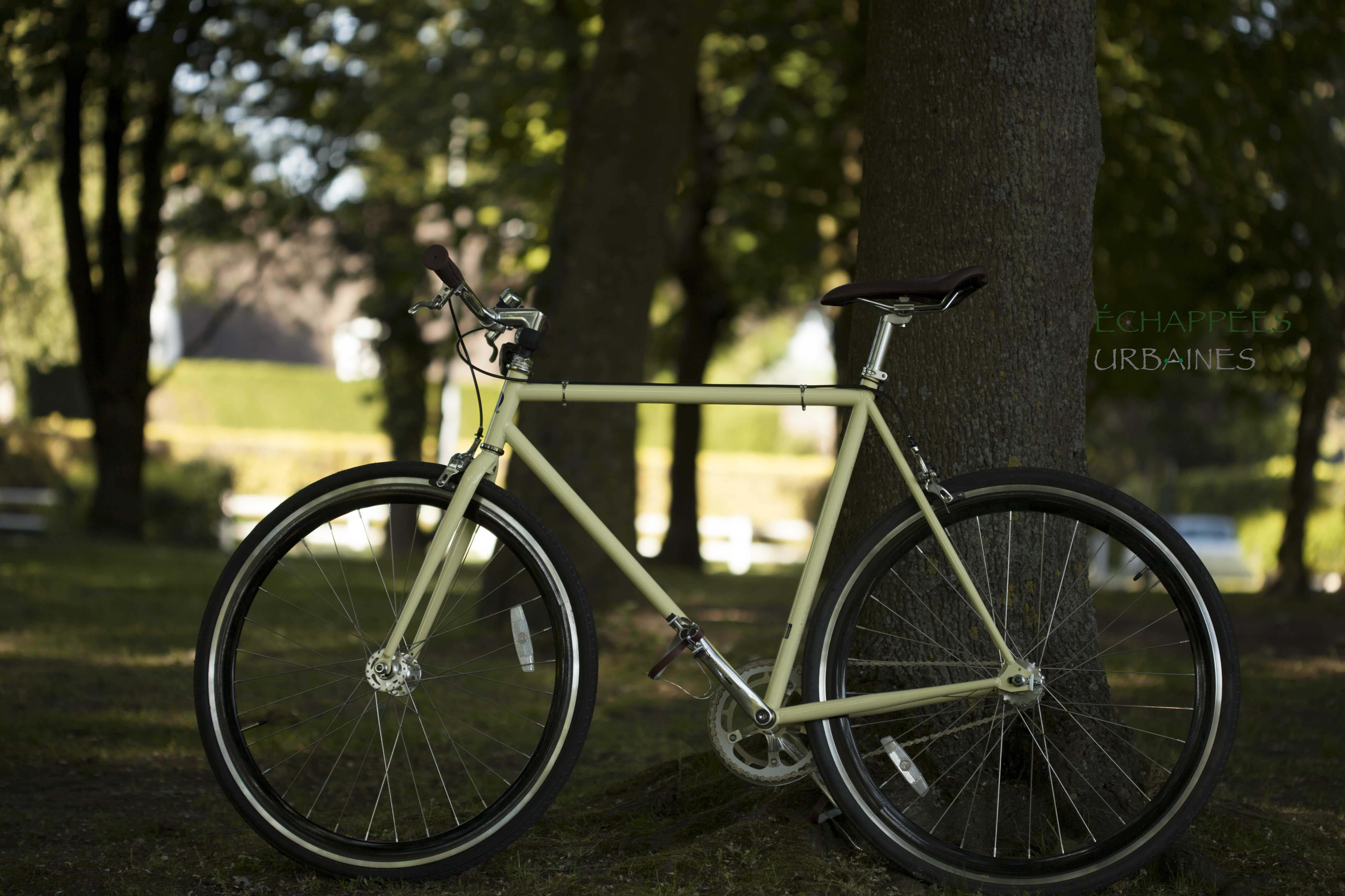 Chappelli Cycle – Fixie Crème