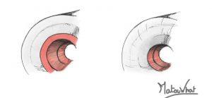 Noyaux de longboard